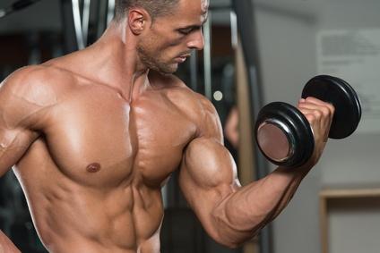 Kraftsportler und Muskelaufbau