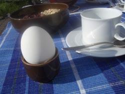 Fr�hst�ck mit Ei